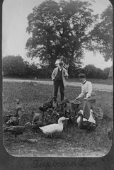 "Feeding ducks, Church Farm. The photographer titled this one ""Cupboard Love"""