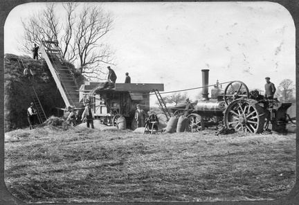 Harvesting with steam engine