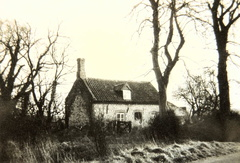 A chalk Cottage, on the site of the present Butterfly House, 1959.