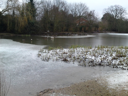 The frozen pond