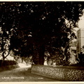 Church Lane. Postcard. Loaned JW